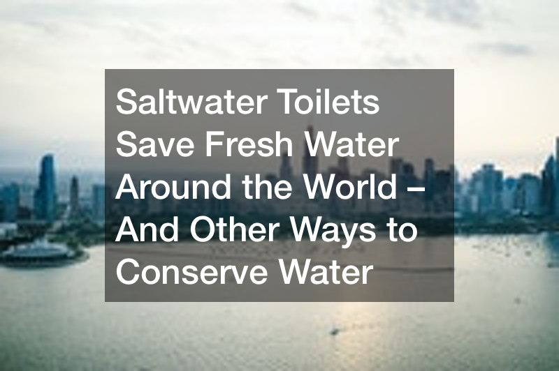 Saltwater Toilets Save Fresh Water Around the World – And Other Ways to Conserve Water